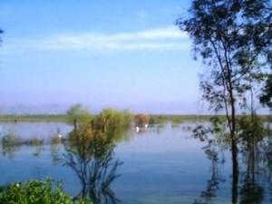 lake_elsinore